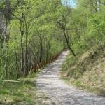 sentiero_quaresima